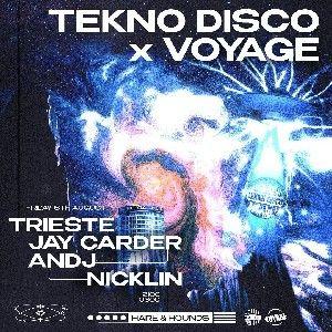 Tekno Disco x Voyage: Hare Takeover 🛸 thumbnail